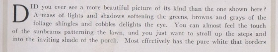 1917 description