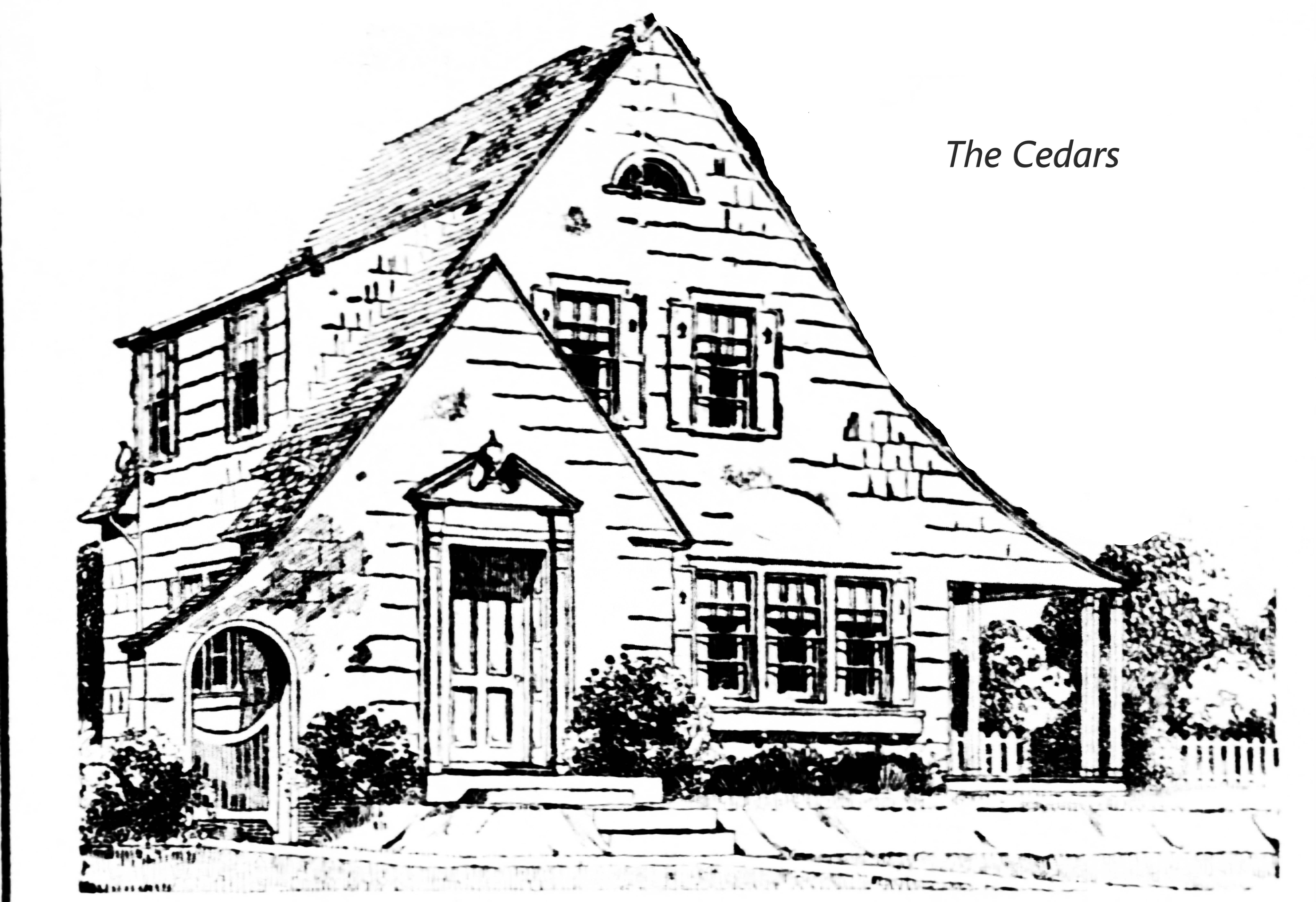 Cedars coloring page